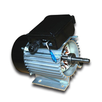 120v ~ 230v Single Phase Asynchronous Electric AC Motor For Chemical Pump, Water Pump MM113